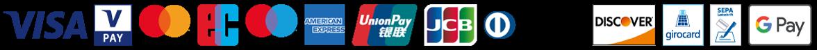 Logos der Kartenbrands VISA, V Pay, mastercard, EC, maestro, Amex, UnionPay, JCB, Diners, Discover, girocard, SEPA, ApplePay und GooglePay